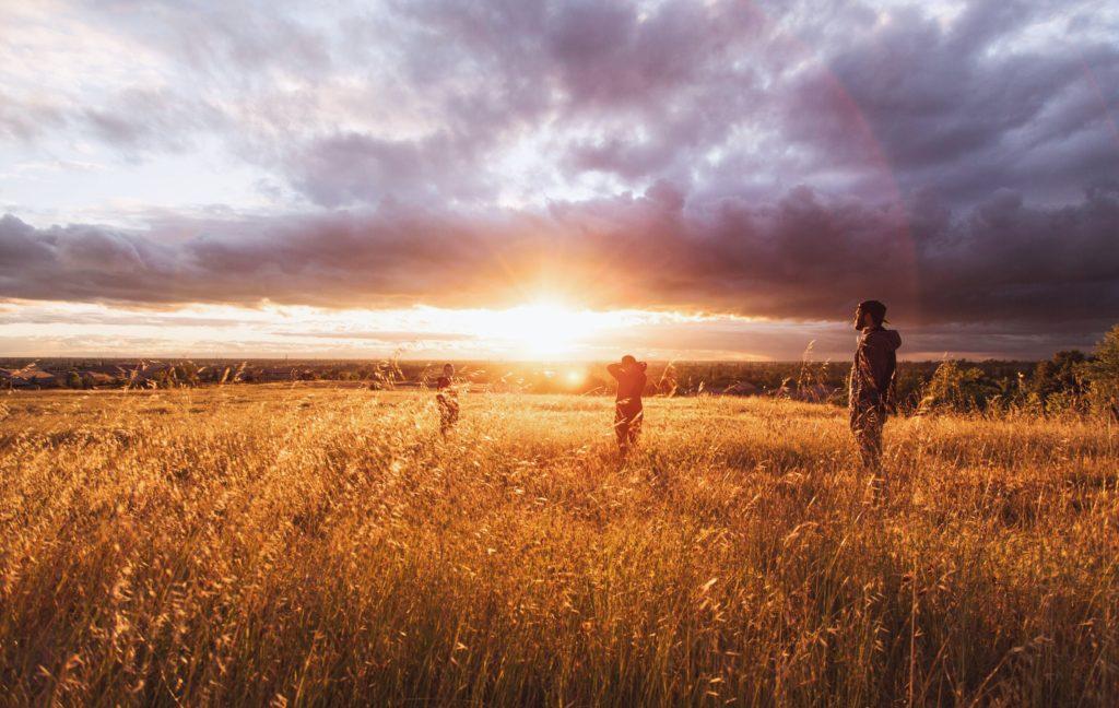 Bunbus Weg — Eine Reise zu Deinem Ikigai